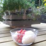 Vanille-rode bessen yoghurtijs