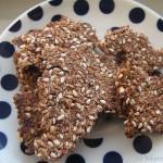 Glutenvrije Chocolade Kokos Zaden Crackers
