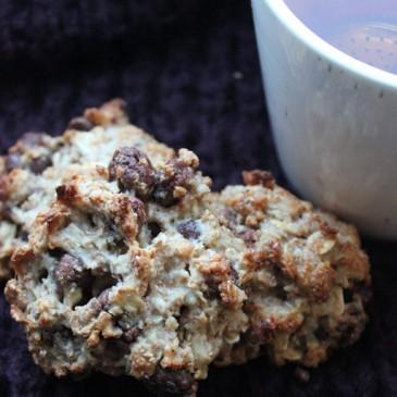 Chocolade Rozijn Haver Koekjes