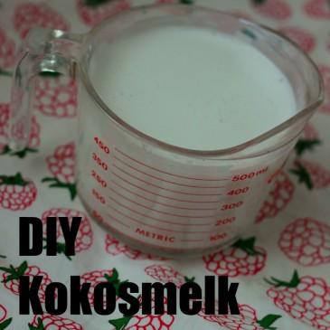 DIY Kokosmelk (en kokosmeel!)